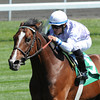 Keeneland Race Course, Lexington, KY 4/7/12 <br /> Al Khali, Alan Garcia up, wins the 5th race<br /> Photo by Mathea Kelley