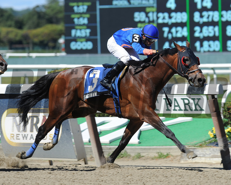 Saginaw wins the 2012 Promenade All Stakes.<br /> Coglianese Photos