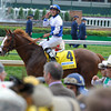 Caption:  Shackleford with Jesus Castanonwins the Churchill Downs (gr. II).<br /> Kentucky Derby and Kentucky Oaks contenders on the track at Churchill Downs near Louisville, Ky. on May 5, 2012.<br /> Churchill Downs1  image697<br /> PHoto by Anne M. Eberhardt