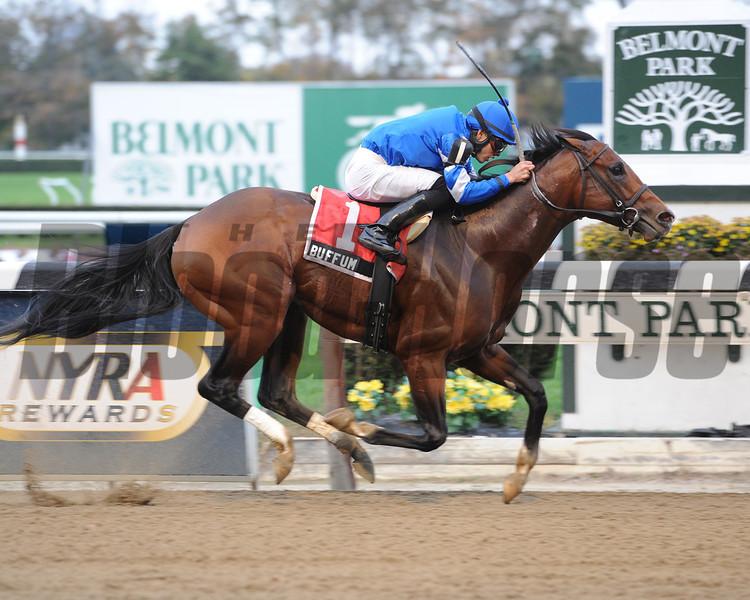 Buffum wins the 2012 Bold Ruler.<br /> Coglianese Photos