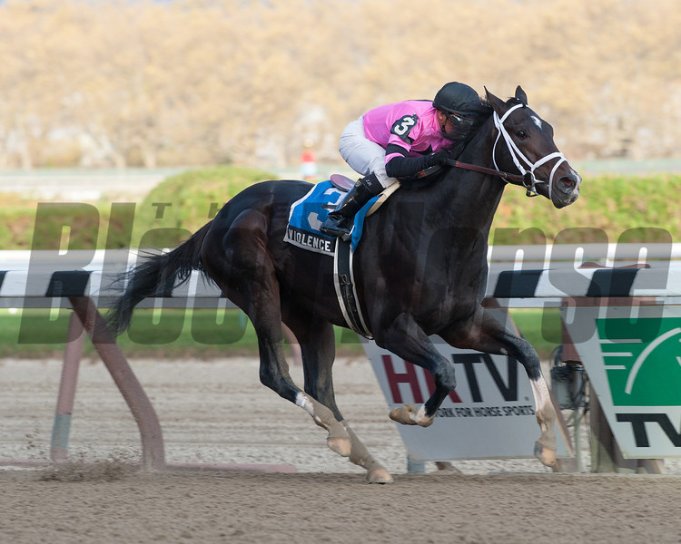 Violence wins the Nashua Stakes (gr. 2)<br /> Kockey: Javier Castellano<br /> AQUEDUCT, Ozone Park, NY<br /> Purse: $200,000<br /> Date: November 4, 2012<br /> Class: Grade 2<br /> TV:<br /> Age: 2 yo<br /> Race: 8<br /> Distance: One Mile<br /> Post Time: 3:43 PM