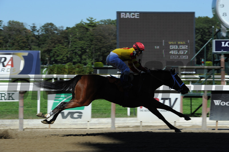 Miss Patricia jumping a shadow after her maiden win on October 11, 2012 at Belmont Park.<br /> Coglianese Photos
