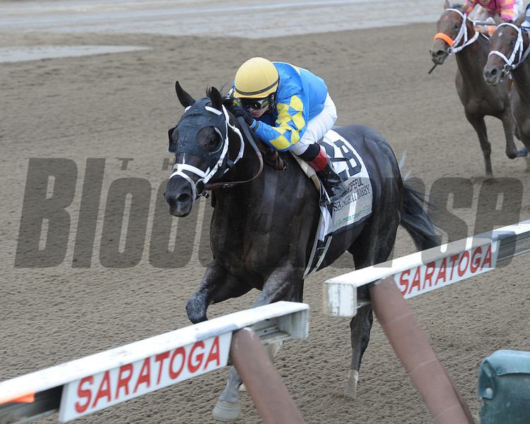 Shanghai Bobby wins the Hopeful Stakes at Saratoga.<br /> Photo by Adam Coglianese