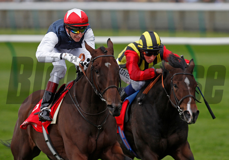 Racing from Newmarket 29/9/12, Bahrain Sun Chariot Stks.<br /> Siyouma wins from Elusive Kate (right)<br /> Photo by Trevor Jones