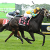 Compliance Officer wins the 2012 Kingston<br /> <br /> Photo by Coglianese Photos