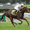 Watsdachances wins the Ms. Grillo Stakes.<br /> Photo by Coglianese Photos