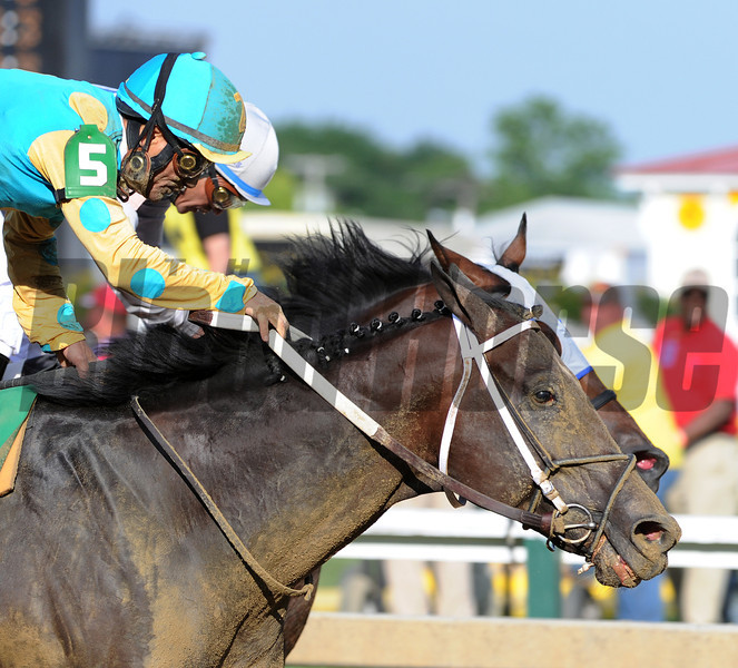 Alteration, Luis Quinonez up, wins the Pimlico special,  Pimlico Race Track, Baltimore, MD 5/18/12, <br /> Photo by Mathea Kelley