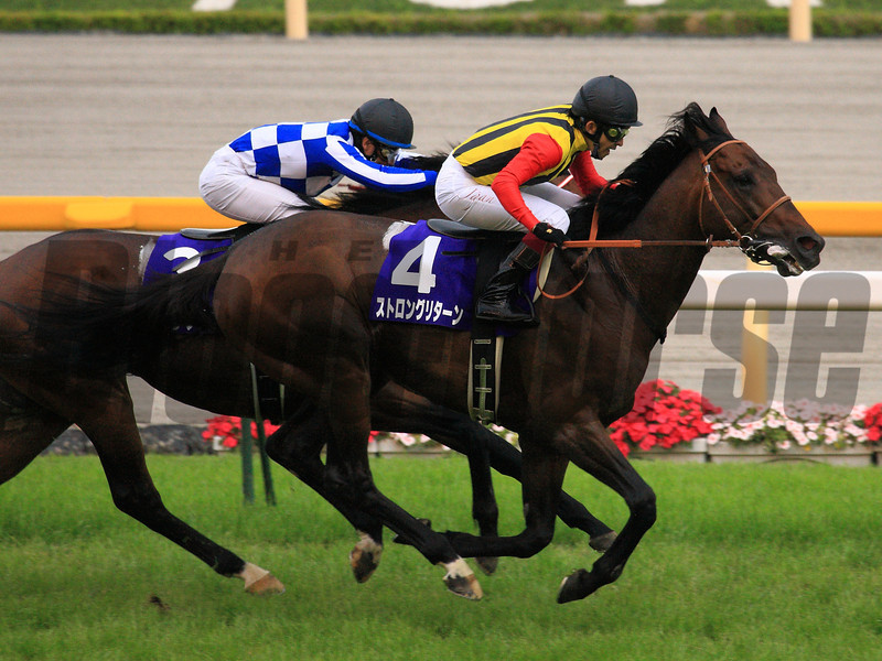 Strong Return wins the Yasuda Kinen.<br /> Naoji Inada Photo