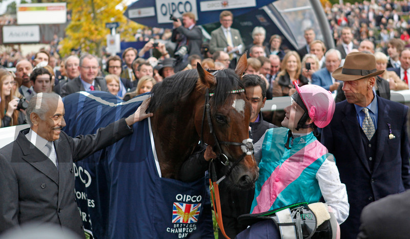 Racing from Ascot 20/10/12 Champion Stakes.<br /> Frankel (left) iin the winners enclosure with connections<br /> Trevor Jones Photo