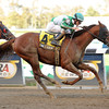 Mine Over Matter wins the 2012 Hudson.<br /> Coglianese Photos