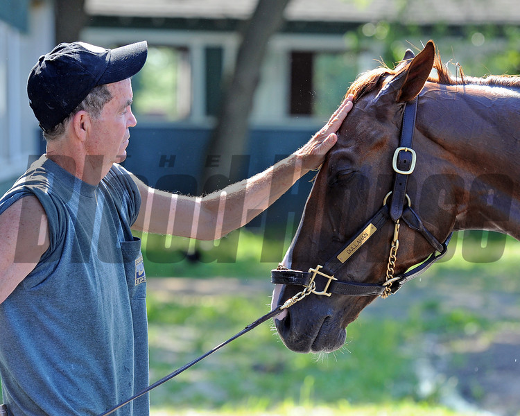 Dullahan and groom/hotwalker Jimmy Drowns, Friday morning at Belmont...<br /> © 2012 Rick Samuels/The Blood-Horse