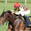 Silver Max, Robby Albarado up wins the Transylvania Stakes, Keeneland Race Course; Lexington; KY 4/6/12 <br /> Photo by Mathea Kelley