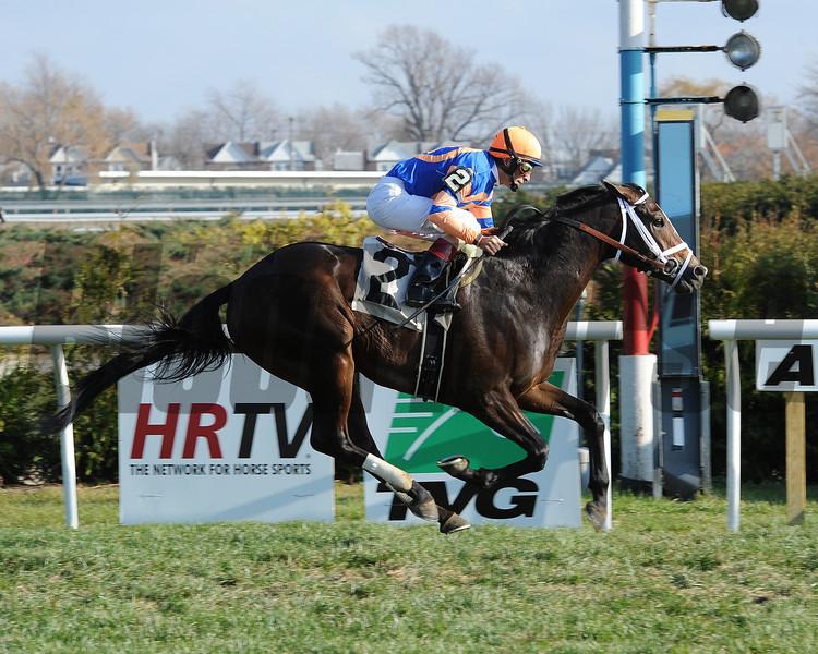 Notacatbutallama wins the 2012 Super Mario Stakes.<br /> Coglianese Photos