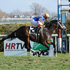 Notacatbutallama wins the 2012 Super Mario Stakes.<br /> Coglianese Photos