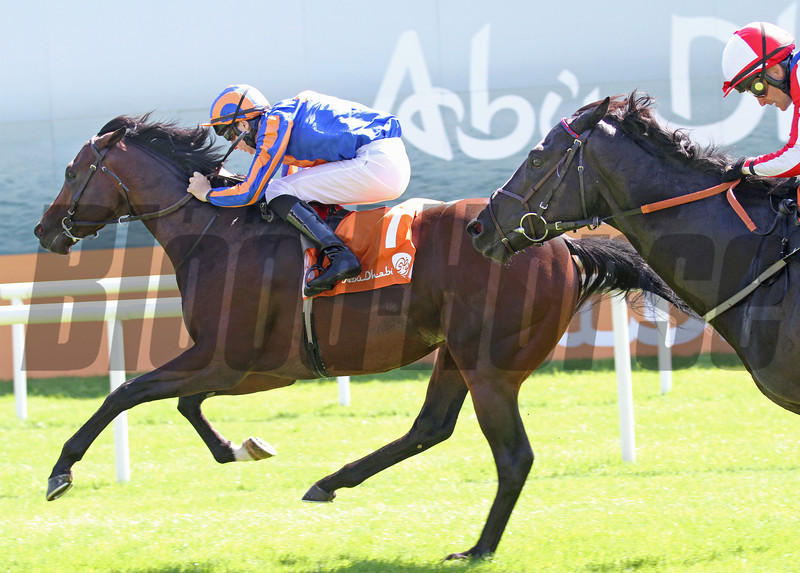 The Curragh 26/5/12. The Abu Dhabi Irish 2,000gns.<br /> Power ridden by Joseph O Brien wins from Foxtrot Romeo (right)<br /> Photo by Trevor Jones