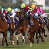 Gentildonna wins the Oka Sho (Japanese 1000 Guineas)<br /> Kate Hunter Photo