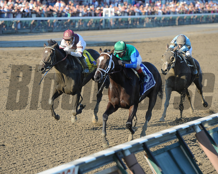 Love and Pride wins the 2012 Personal Ensign.<br /> Coglianese Photos