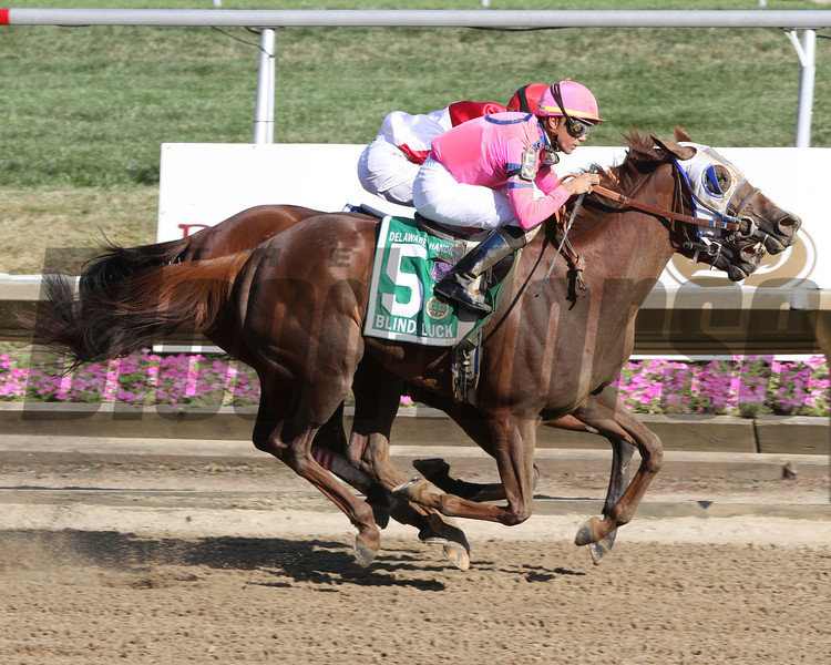 Blind Luck w/Garrett Gomez up beats Havre de Grace w/Ramon Dominguez up by a nose to win the 74th Running of The Delaware Handicap (GII) at Delaware Park on July 16, 2011.<br /> Photo by Chad Harmon