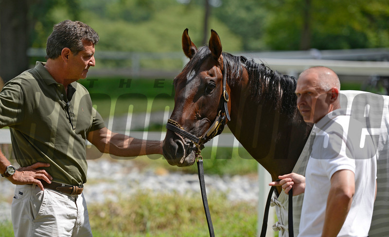 Grace Hall, a potential contestant in Saturday's Alabama Stakes gets some attention from owner Michael Dubb, left and trainer Tony Dutrow, right at the Saratoga Race Course in Saratoga Springs, N.Y. Aug 13, 2012. <br /> Photo by Skip Dickstein