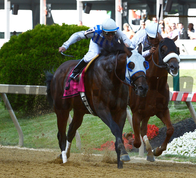 Alternation ridden by Luis Quinonez wins the 42nd running of The Pimlico Special at Pimlico Race Course in Baltimore, MD May 189, 2012.  Photo by Skip Dickstein