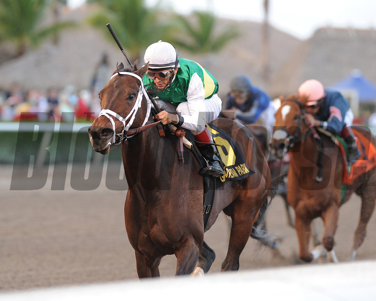 Dust and Diamonds wins the 2012 Sugar Swirl.<br /> Coglianese Photos/Kenny Martin