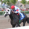 Bahamian Squall wins the Sunshine State Stakes<br /> Jockey: Luis Saez<br /> GULFSTREAM PARK, Hallandale, FL<br /> Purse: $100,000<br /> Date: December 2, 2012<br /> Class:<br /> TV:<br /> Age: 3 yo's & up<br /> Race: 8<br /> Distance: Seven Furlongs<br /> Post Time: 4:05 PM<br /> Coglianese Photos