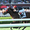 Point of Entry wins the 2012 Sword Dancer.<br /> Photo by Coglianese Photos/Courtney Stafford