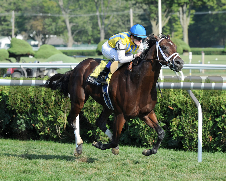 Dominus wins the 2012 Bernard Baruch Handicap (gr. IIT). <br /> Coglianese Photos