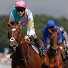 Goodwood Sussex Stakes, 1/8/12.<br /> Frankel ridden by Tom Quealy wins by six lengths from Farhh (blue)