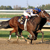 My Miss Aurelia w/Corey Nakatani up win the 43rd Running of the Cotillion Stakes (GI) at Parx on September 22, 2012.<br /> Photo by Chad B. Harmon