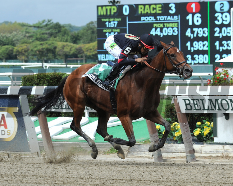 Awesome Feather wins the 2012 Nasty Storm.<br /> Coglianese Photos