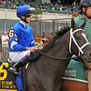 It's Tricky, Eddie Castro up<br /> © 2012 Rick Samuels/The Blood-Horse