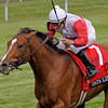 Caption:  <br /> Data Link with Alex  Solis up wins the Maker's 46 Mile (gr. IT) at Keeneland on April 13, 2012, in Lexington, Ky.<br /> Makers46Mile Origs1 image9006<br /> PHoto by Anne M. Eberhardt