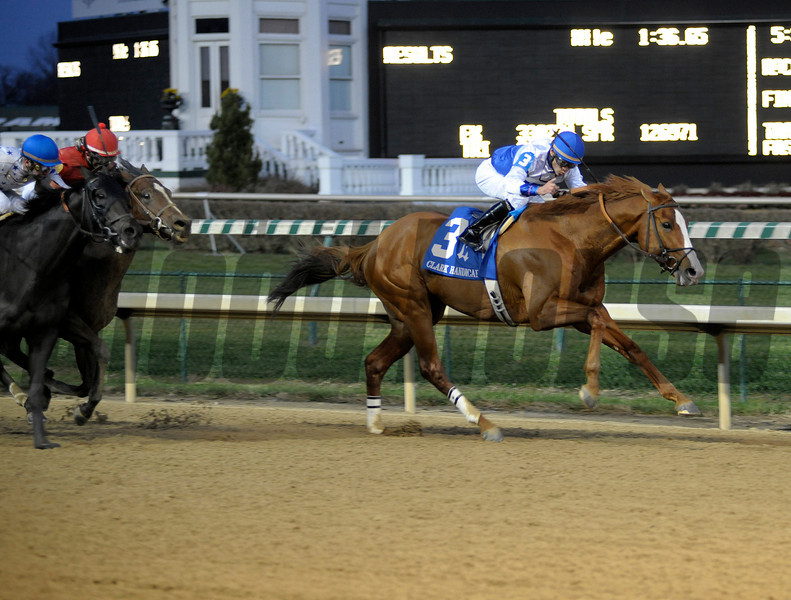Shackleford wins the Clark Handicap at Churchill Downs on Nov. 23, 2012, in Louisville, Ky.<br /> Clark Origs 1 image482<br /> Photo by Anne M. Eberhardt