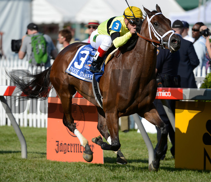 Hudson Steele with jockey Javier Castelano in the irons wins the 11th running of The Jagermeister Dixie Stakes (GII) at Pimlico Race Course in Baltimore, MD May 19, 2012.  <br /> PHOTO BY SKIP DICKSTEIN