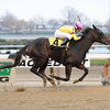 Singlet wins the 2012 Garland of Roses. <br /> Coglianese Photos