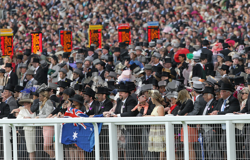 Royal Ascot 2012<br /> Photo by Trevor Jones