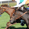 Moonwalk, Corey Lanerie up, wins the JP Morgan Chase Jessamine, Keeneland Race Track; Lexington, KY 10/11/12 photo by Mathea Kelley