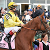 Nahrain, John Velazquez up, winners of the Gr1 Flower Bowl Invitational...<br /> © 2012 Rick Samuels/The Blood-Horse