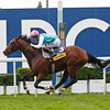 Racing from Ascot 20/10/12 Champion Stakes.<br /> Frankel (left) crosses the line to victory.<br /> Trevor Jones Photo