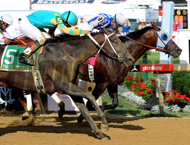 Pin Oak Stables Alternation, Luis Quinonez up, holds off a late run by Nehro, to win the Gr3 Pimlico Special...<br /> © 2012 Rick Samuels/The Blood-Horse