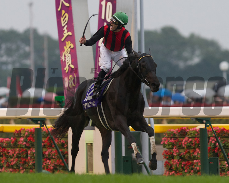 Eishin Flash wins the Emperor's Cup Fall (Tenno Sho Aki)<br /> Photo by Kate Hunter