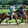 Belmont longshot Five Sixteen (L), works Friday morning under jockey Rosie Napravnik<br /> © 2012 Rick Samuels/The Blood-Horse