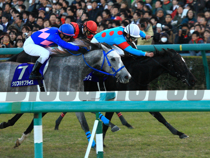 Robe Tissage wins the Hanshin Juvenile Fillies at Hanshin Racecourse on Sunday, December 9th, 2012.<br /> Photo by Naoji Inada
