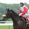 Air Support wins the 2012 Bowling Green.<br /> Photo by Coglianese Photos