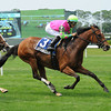 Gitchee Goomie wins the 2012 Mount Vernon<br /> <br /> Photo by Coglianese Photos