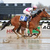 Vyjack wins the 2012 Traskwood Stakes.<br /> Coglianese Photos