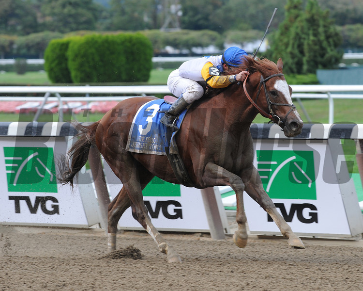 Jersey Town wins the 2012 Kelso.<br /> Coglianese Photos/David Alcosser