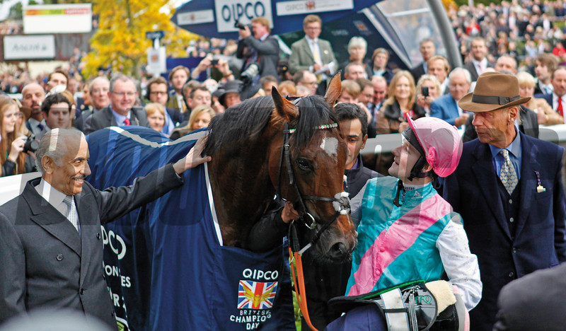 Racing from Ascot 20/10/12 Champion Stakes.<br /> Frankel (left) iin the winners enclosure withe connections