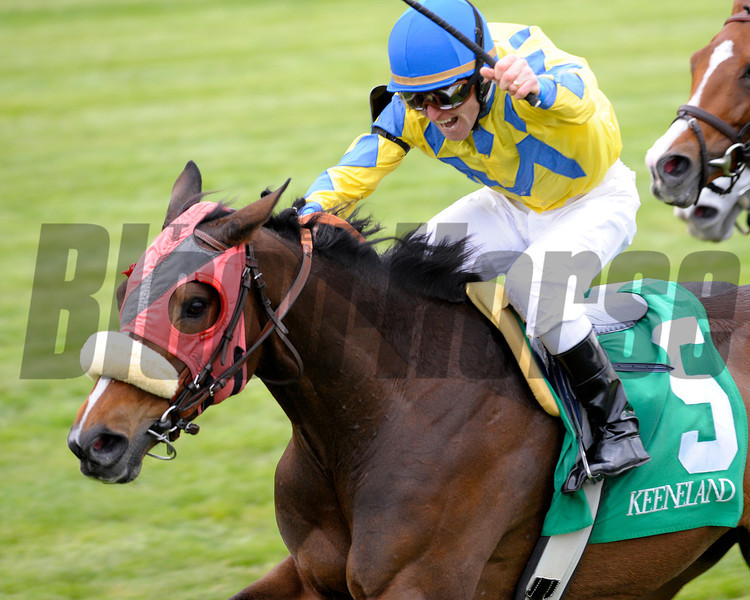 Caption:  <br /> Daisy Devine with James Graham up wins the Jenny Wiley Stakes (gr. I) on April 14, 2012, at Keeneland in Lexington, Ky.<br /> KEESpring2012 Jenny Wiley1 image255<br /> PHoto by Anne M. Eberhardt